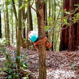 freetoedit monkey woods mask