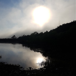 foggyweather sunsetsilhouette silhouttes