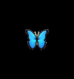 freetoedit vsco butterfly aesthetic blue