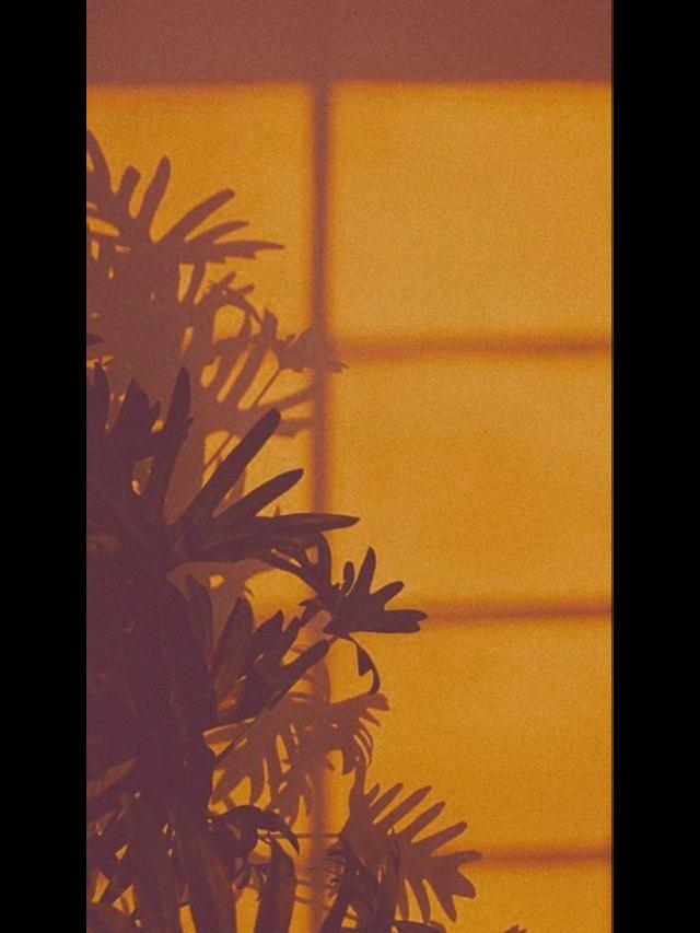 #freetoedit #janela #Window #aesthetic #vintage