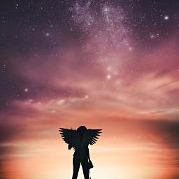 freetoedit nature picsart galaxy wings stars silhouette remixed