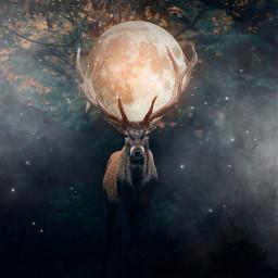 freetoedit papicks picsart deer moon