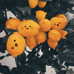 freetoedit lemon funny cute yellow eccolorpop colorpop colorsplash