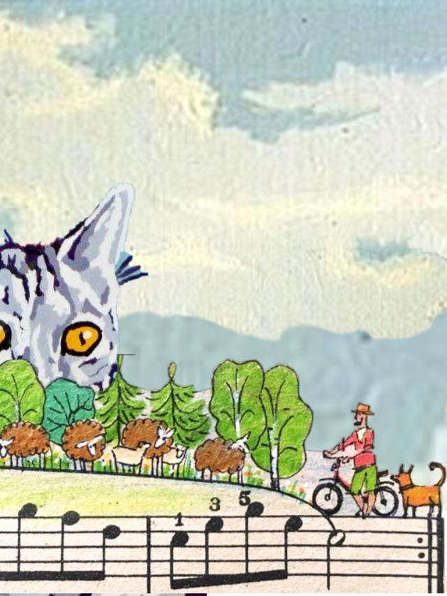 #cat #music #bike #dog