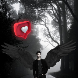 freetoedit angel wings tylerhoechlin like