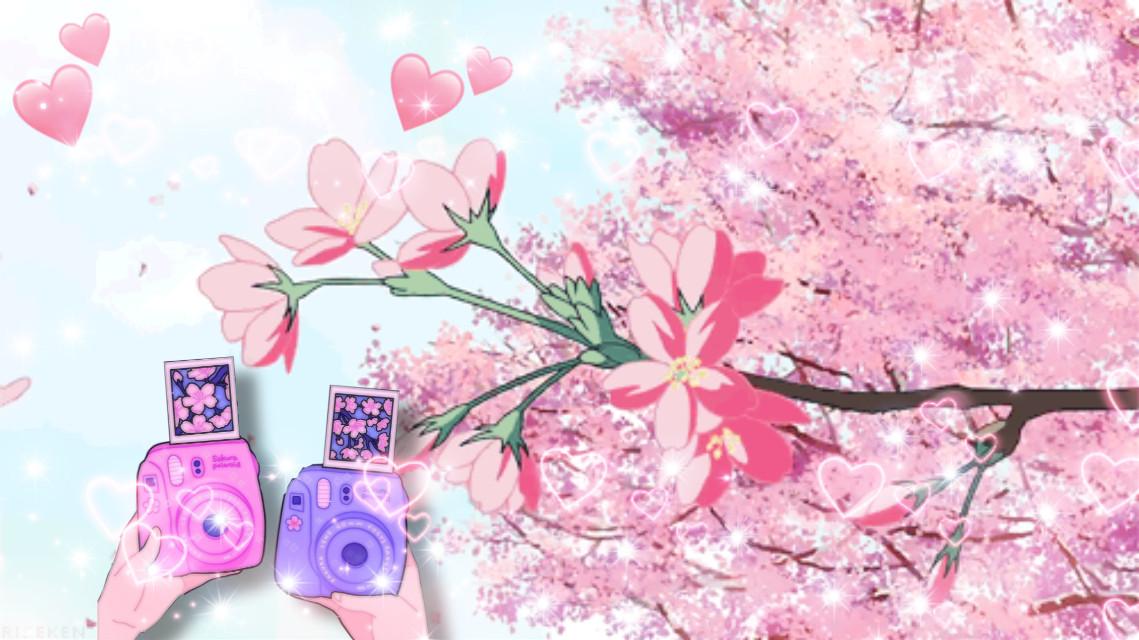 Sakura 🌸 #freetoedit