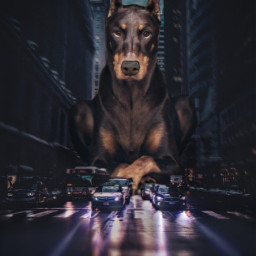 freetoedit giantanimal dog city street