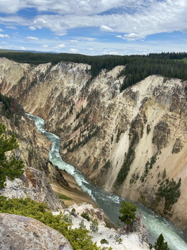 This canyon is huge, look at a tree to notice how big the actual canyon is, in comparison. #yellowstoneriver