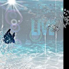 freetoedit vidamarina salvemoselmar ircwaterworld waterworld