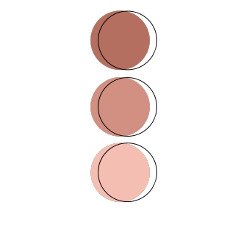 pallete circle colors cores paleta freetoedit