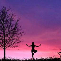 freetoedit yoga tree sky gradient