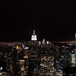 rat newyork view viewfrommywindow ratlife