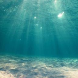 freetoedit ocean sand sea underwater