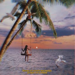freetoedit vipshoutout swing palmtrees seagull ftestickers
