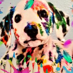 freetoedit ircrainbowcolors rainbowcolors