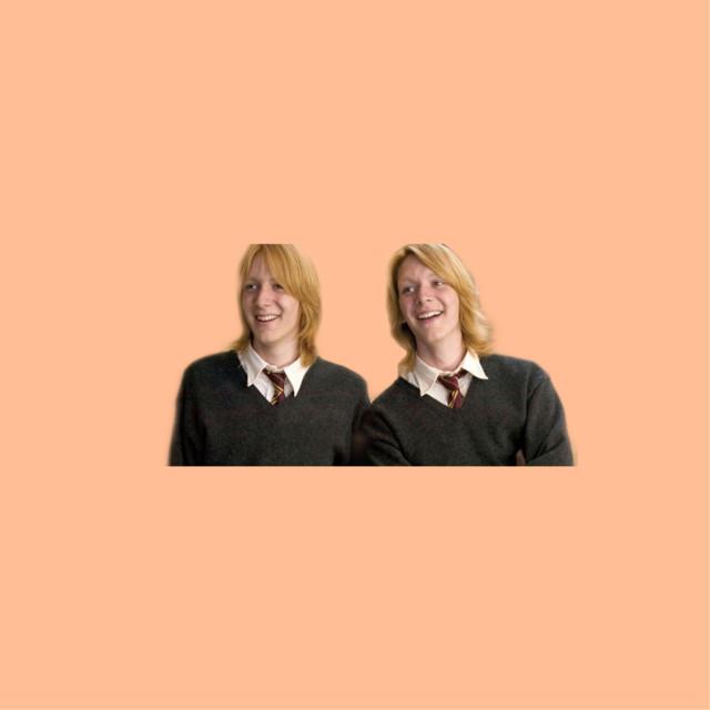 Fred and George 🥵🤩😍❤️🥺🥰😂   edit*  #fredandgeorge #fredandgeorgeweasley #weasleytwins #weasleywizardwheezes #redhead #cute