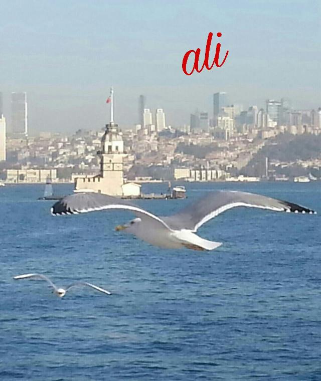#myphotoshoot #love #istanbulcity