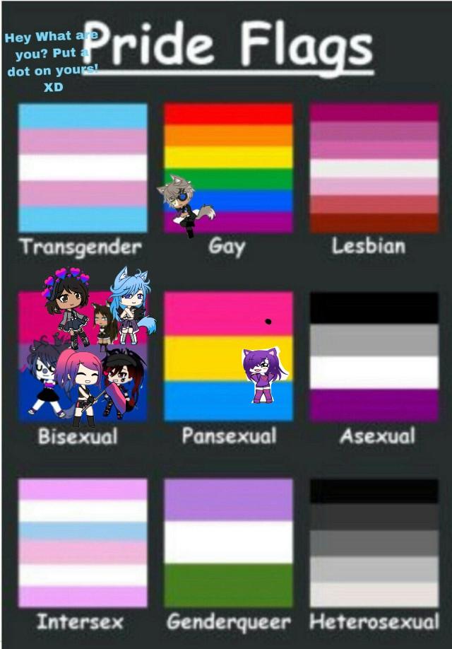 #freetoedit #gachalife #fakecollab #prideflags #bisexual