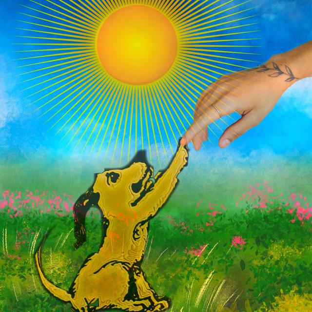 #freetoedit I 💜 my dog 🐶🐶🐶 #dog #doglover #love #friendship #myedit #remix #madewithpicsart