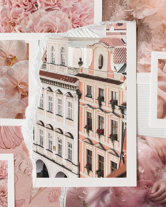 #personal #createdbyme #collage #moodboard #bloom #aesthetics  #freetoedit