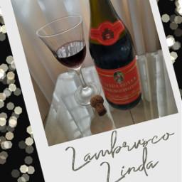 lambrusco winelovers wine winehouse salute