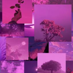 aesthetic template flowers sky pink freetoedit