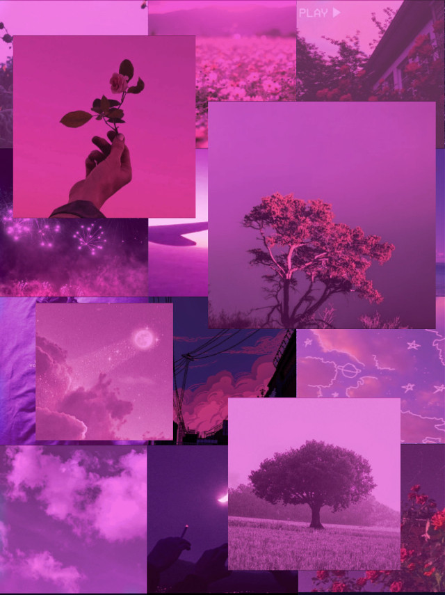 ✰aesthetic template for use✰ #aesthetic #template #flowers #sky #pink #pretty #cute #art #collage #background #interesting #night #nature #plant #moon #love #life #live #bestie #pastel #freetoedit
