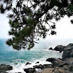 sea busan southkorea photography