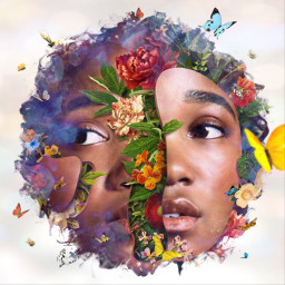 freetoedit photomanipulation floral paintstroke