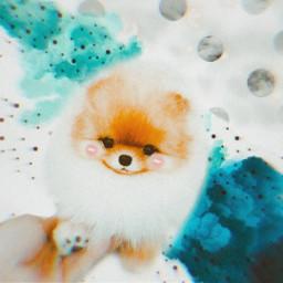 freetoedit puppie cute polkadot dots srcspeckledpolkadots speckledpolkadots