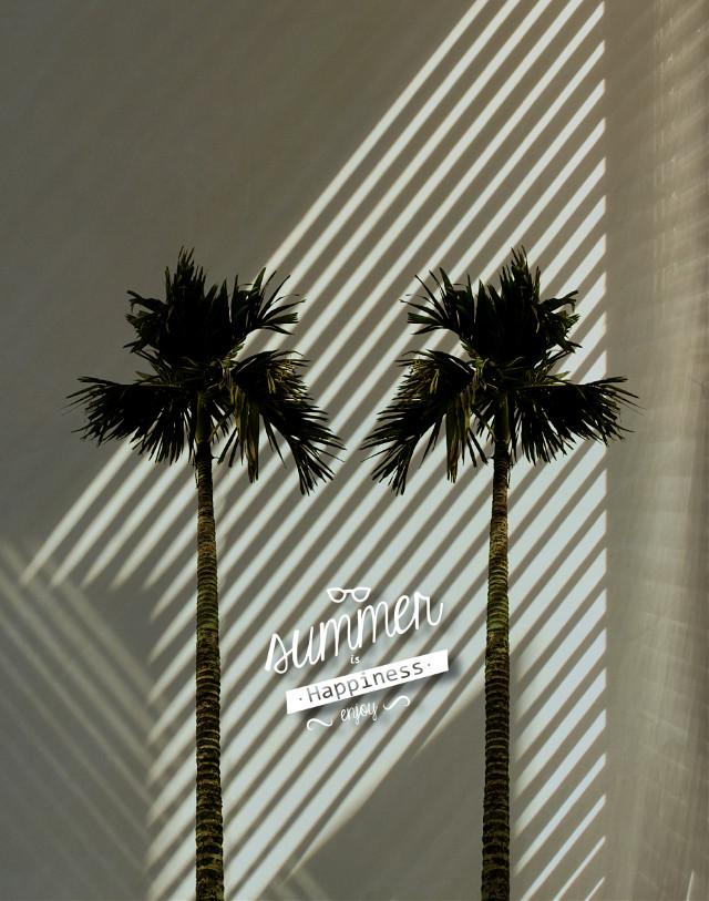 #freetoedit #summer #palms #madewithpicsart