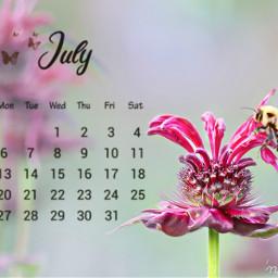freetoedit myoriginalmyedit madewithpicsart srcjulycalendar julycalendar