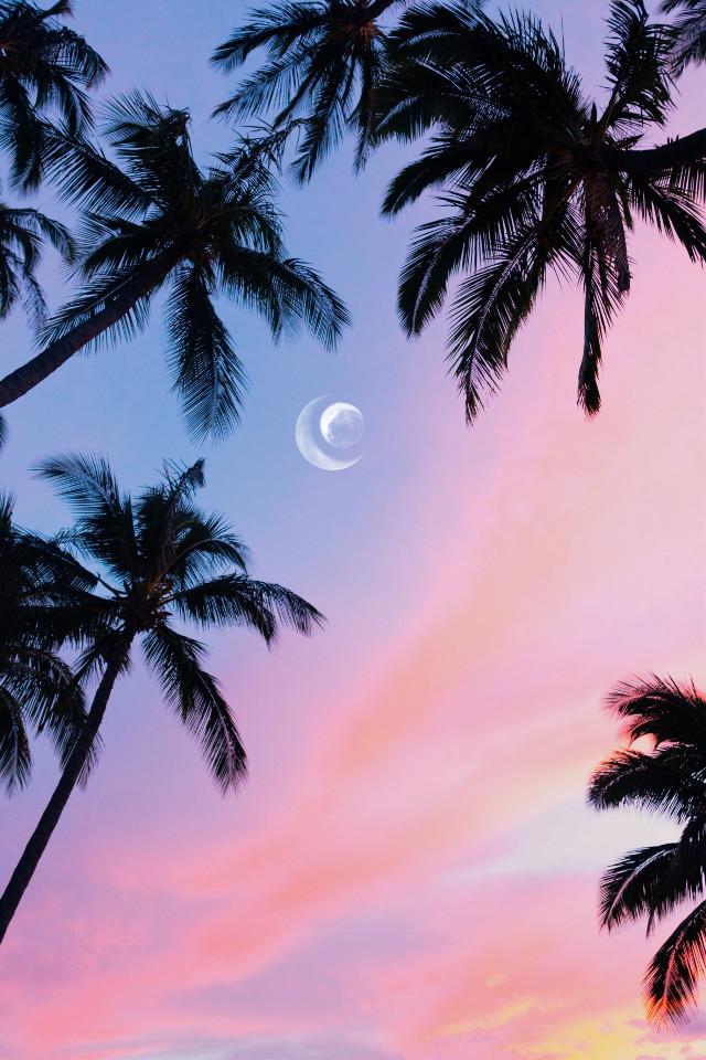 17.7ᴋ!! 🌟❤️  ᴛʜᴀɴᴋ ʏᴏᴜ ꜱᴏ ᴍᴜᴄʜ!! 🌸🌟❤️💎  ᴏᴘ ꜰʀᴏᴍ ᴜɴꜱᴘʟᴀꜱʜ 🌟   #unsplash #background #remixme #remixit #moon #freetoedit #sky #summer #pastel #aesthetic #palmtrees #picsart