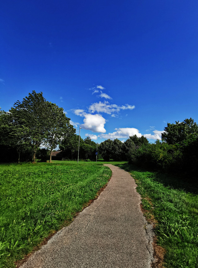 Just liked this view #trees #skyandclouds #pathway #colourful #outandabout  #freetoedit