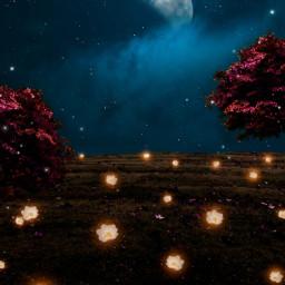 freetoedit night flowers tree trees scene