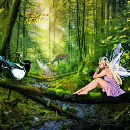 freetoedit fairy fantasy fantasyart imagination