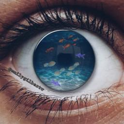 freetoedit eyeedit fishtank fish glass
