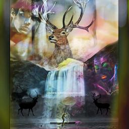feelings lostlove models wildlife deers