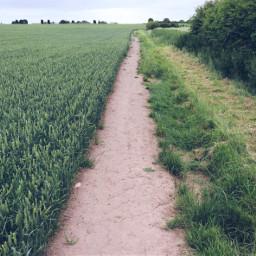 pathway landscape field outandabout freetoedit