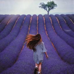 freetoedit лаванда девушка пиксарт фиолетовый