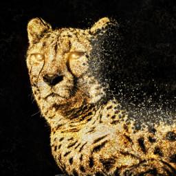 freetoedit gold glitter leopard magicbrush
