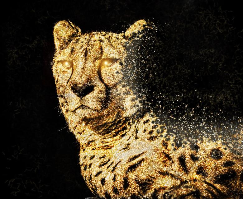 #freetoedit #gold #glitter #leopard #magicbrush #stickers #dispersion #madewithpicsart #picsarteffects #drawtool #animals