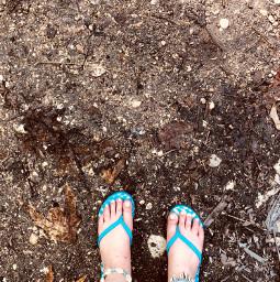 memories summer2018 beachday shells