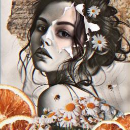 freetoedit madewithpicsart surreal myedit ircchamomilesanddaisies chamomilesanddaisies