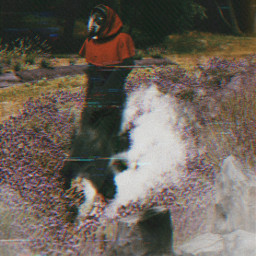 mask plage black misterious redcap freetoedit