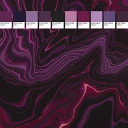 purple red wallpapers pantone freetoedit