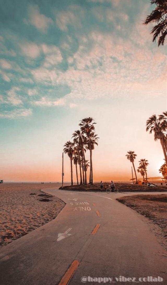 ✨ 𝕎𝕖𝕝𝕔𝕠𝕞𝕖 𝕥𝕠 @happy_vibez_collab ✨  ᵀᵒᵈᵃʸ'ˢ ᵖᵒˢᵗ ⁱˢ ᵇʸ: @sunny_cloudz_   🌊| 𝔻𝕒𝕥𝕖: July 13, 2020 ☀️| 𝕋𝕚𝕞𝕖: 1:41 p.m 🌈| 𝕋𝕚𝕥𝕝𝕖: Palm trees by the beach 🌸| ℍ𝕒𝕤𝕙𝕥𝕒𝕘𝕤: #palmtrees #beach   @happy_vibez_collab 𝐌𝐞𝐦𝐛𝐞𝐫𝐬 [✨] @sunny_cloudz_ [✨] @adoreluhv [✨] @ploar123  [✨] @coralwaves [✨] @sunshinedays123 #freetoedit