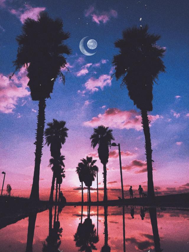 - ʙᴀʜᴀʀɪ - 🌊  ɪ ꜰᴇᴇʟ ʟɪᴋᴇ ɪ ꜱʜᴏᴜʟᴅ ʙᴇ ᴀᴅᴅɪɴɢ ꜱᴡᴀʜɪʟɪ ᴡᴏʀᴅꜱ ᴇᴠᴇʀʏ ɴᴏᴡ ᴀɴᴅ ᴛʜᴇɴ, ʟᴏʟ 😂🌟  ᴏᴘ ꜰʀᴏᴍ ᴜɴꜱᴘʟᴀꜱʜ 🌸  #background #freetoedit #unsplash #aesthetic #vintage #summer #beach #remixme #remixit #sky #pink #palmtrees #moon