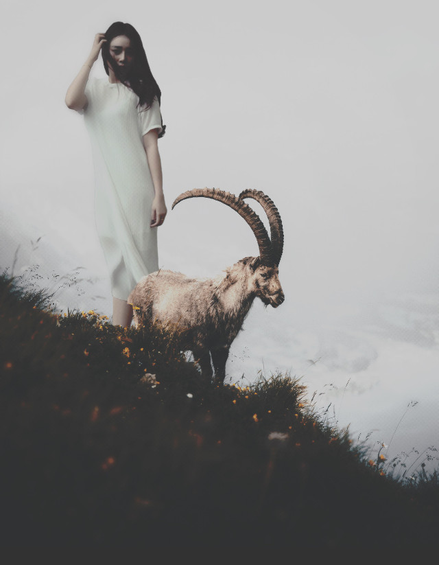 Meet me on the mountain... #Unsplash: Cedric Sreit #goat #scenic  #grow #filmeffect  #freetoedit