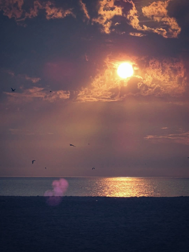 #sunset #sky #beach #reflection #photography #sea  #myphoto #myclick #lensflare #dodgereffect #freetoedit